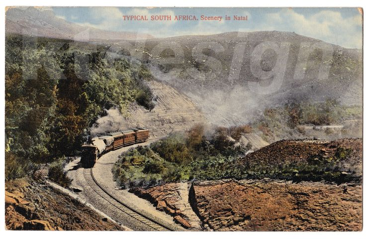 TYPICAL SOUTH AFRICA. Scenery in Natal. Vintage postcard.