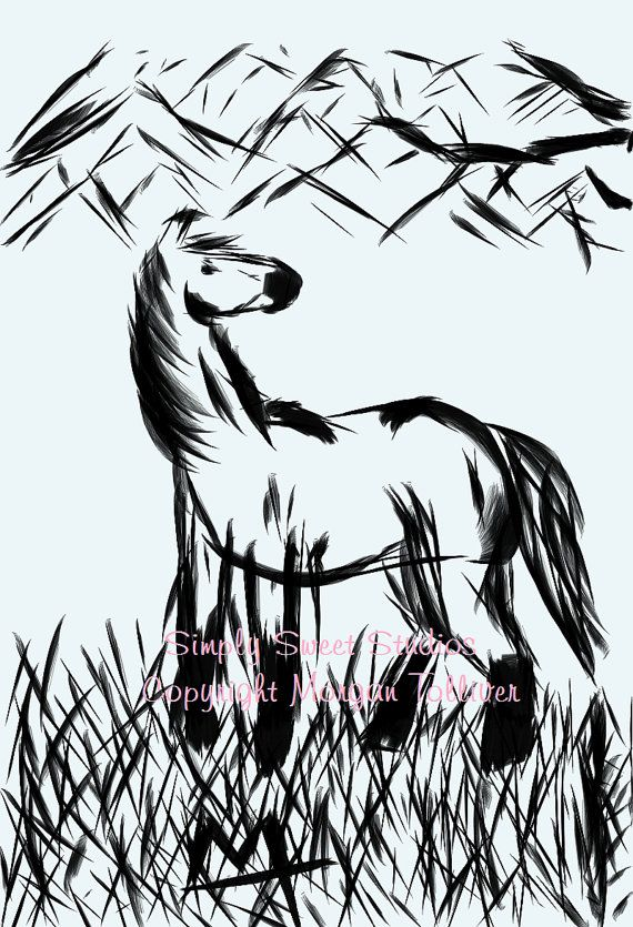 Fine Art Drawing Horse Signed Print Looking By