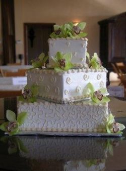 AUSTIN Cake Lady