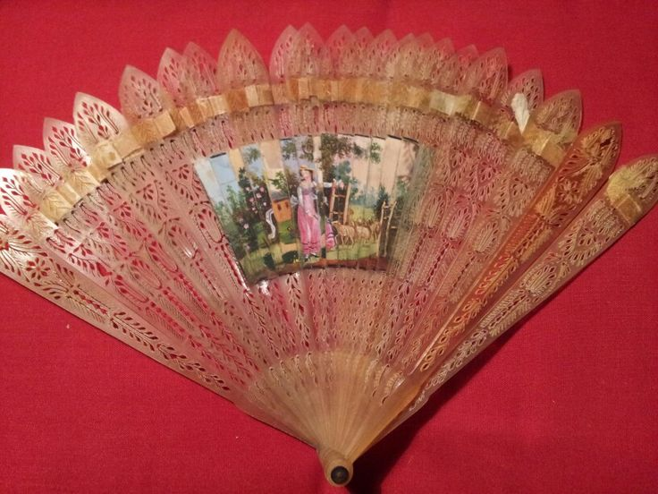 Delicate fan paper and horn.