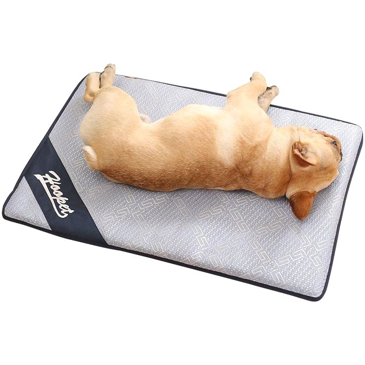 Pin By Richard F Skinner On Frenchie Cat In Heat Pet Cooling Mat Dog Pads