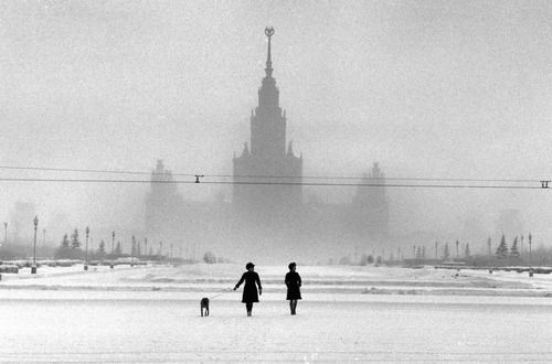 spasso house, moscow, russia, 1968  photo by elliott erwitt/magnum photos, from elliott erwitt's dogsby peter mayle