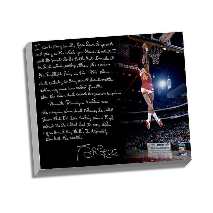 "Steiner Sports Atlanta Hawks Spud Webb Slam Dunk Contest Facsimile 22"" x 26"" Stretched Story Canvas, Multicolor"