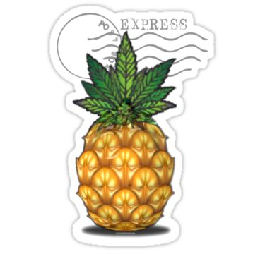 #pineapple , pineappleecpress #weed,#mmj, #cannabis #marijuana