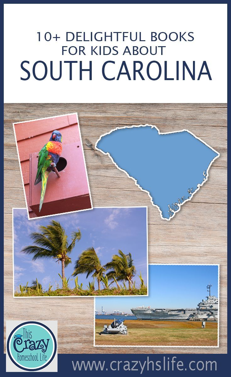 From the Low Country to Upstate South Carolina, bring the charm of this southern state home for your children with these intriguing books.