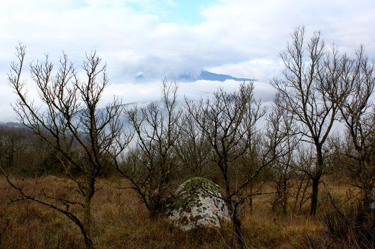 La montagna Amiata #terredisiena