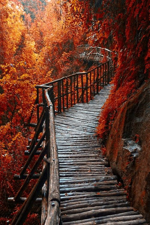 A beautiful walk in the red.