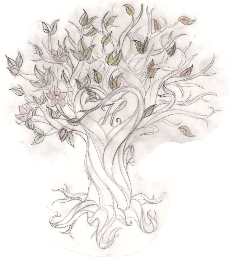 56 best Tree of life ideas images on Pinterest Tree of life - copy coloring pictures of flowers and trees