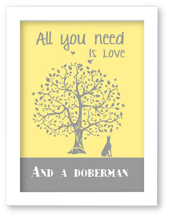 All you need is love and a Doberman!
