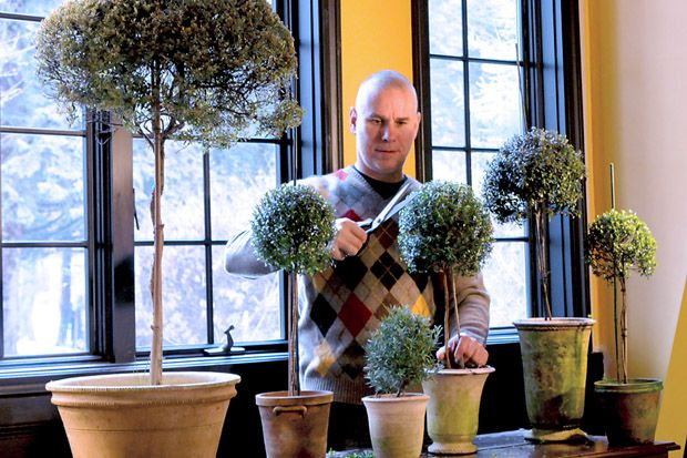 How to Make an Herb Topiary from Cuttings | eHow Home