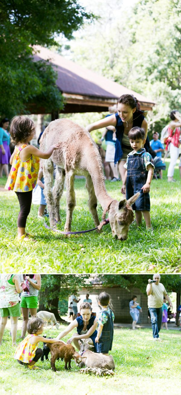 25 best Mobile Petting Zoo Ideas images on Pinterest Mobile