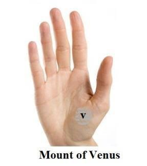 Learn Indian Palmistry & Astrology. Get Your Online Palm Reading Report. Get Palm Reading Prediction For Marriage Line & Divorce. #astrologyonline