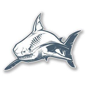 2x 10cm Grand Requin Blanc en vinyle autocollant voiture vélo pour ordinateur portable en plongée Skate # 6085 – 10cm Wide x 7.5cm Tall:…