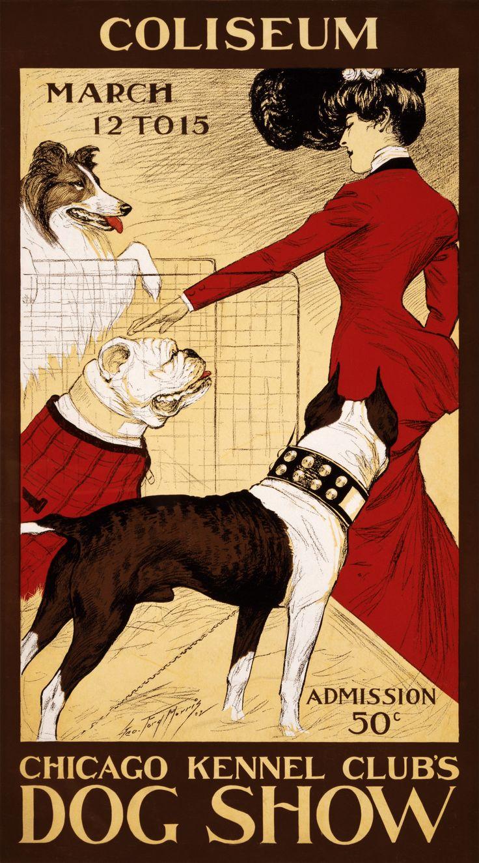 vintage dog pictures | File:Chicago Kennel Clubs Dog Show, advertising poster, 1902.jpg ...