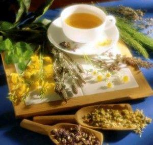 Лечение щитовидной железы травами