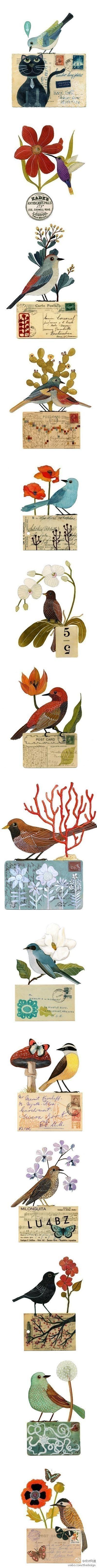 Veľké Latinskej vtáky Tumblr
