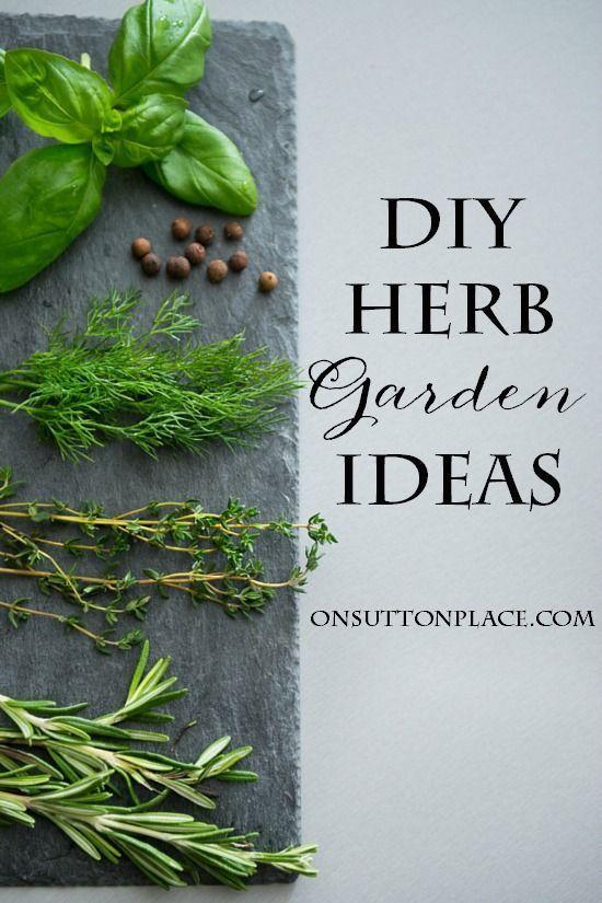 Diy container herb garden ideas herbs garden planting and garden ideas - Herb container gardening ideas ...