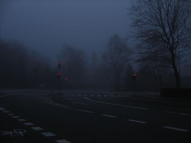 Lights/ Marina Winkel