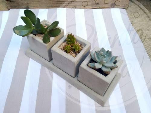Set3 Maceta De Cemento Cubo 8x8 + Plato + Planta Suculenta - $ 299,00
