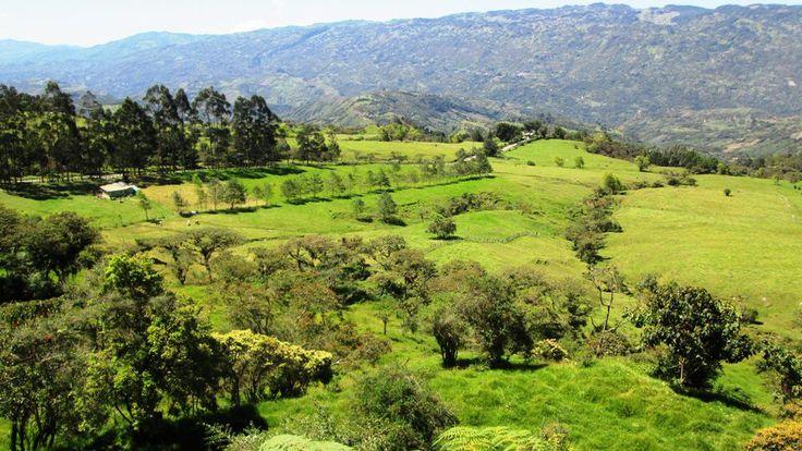 Andes santandereanos Vélez y Bolívar
