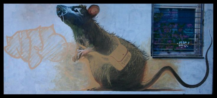 #rat #sinke #sinketattoo #graffiti #athens #streetart