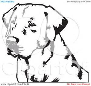 free black lab color coloring pages