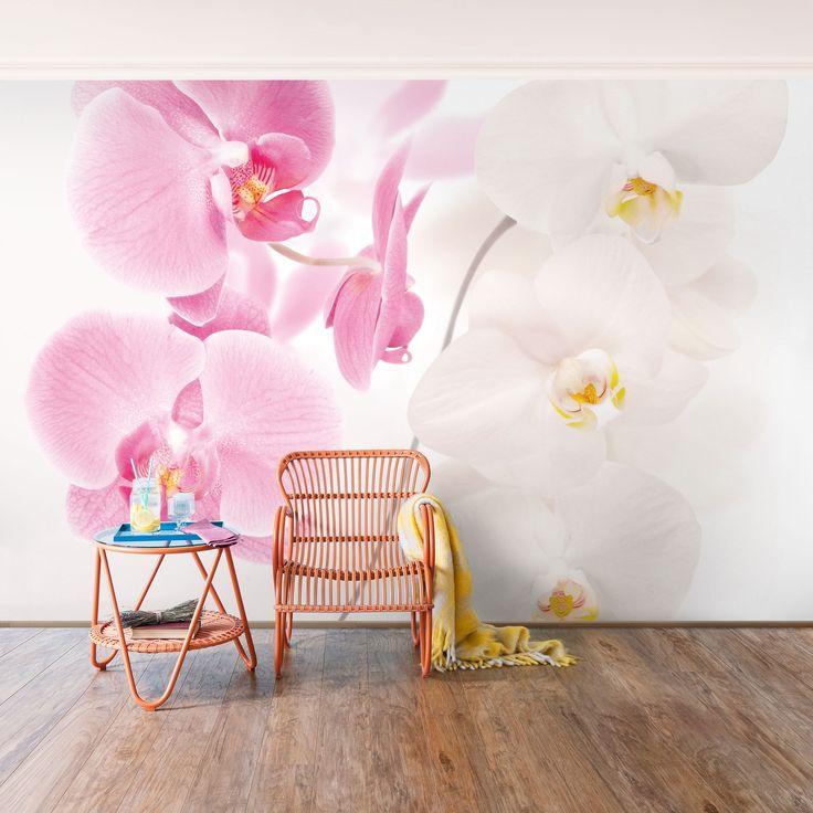 Fototapete Orchidee - Delicate Orchids - Vliestapete Breit