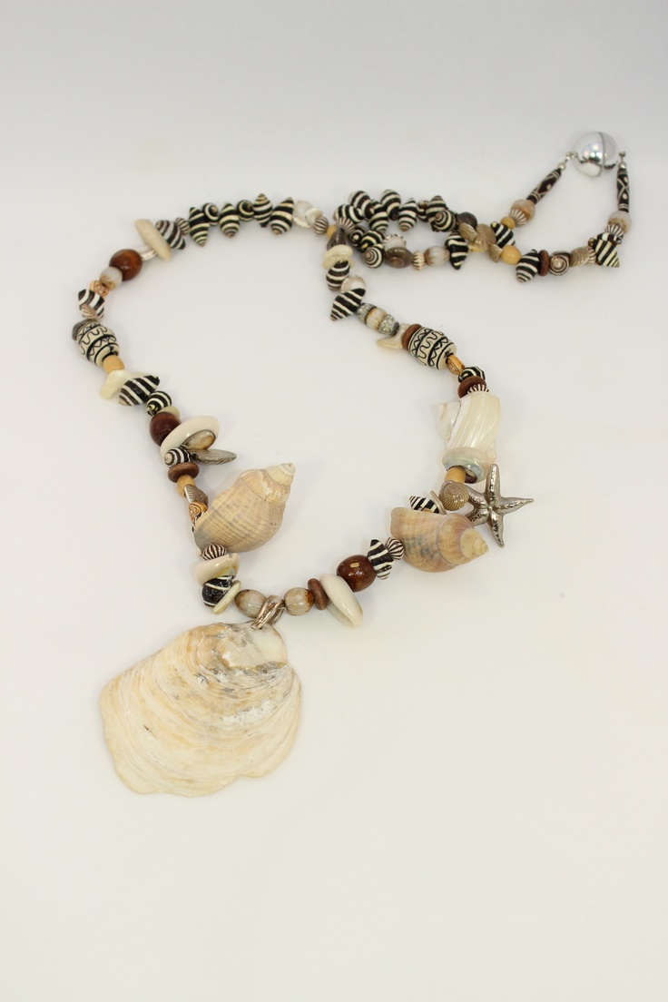 mix from northsea and tropical shell