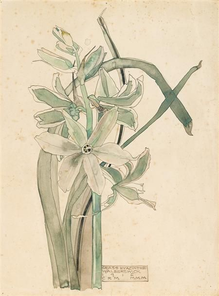 CHARLES RENNIE MACKINTOSH (SCOTTISH 1868-1928) 'GRASS HYACINTHE' 27 X 20CM (10 X 8IN) - SALE 370 - LOT 29 - LYON & TURNBULL