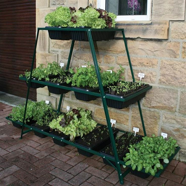 1000 ideas about raised vegetable gardens on pinterest - Raised vegetable garden ideas ...