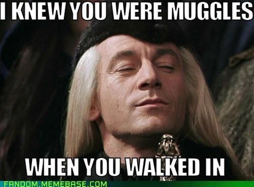 He S Got A Keen Sense Harry Potter Characters Harry Potter Obsession Harry Potter Funny