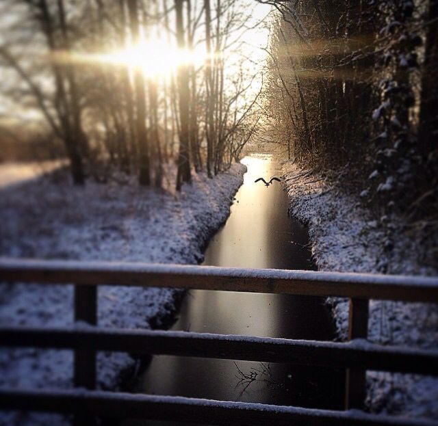 Holland, winter day.