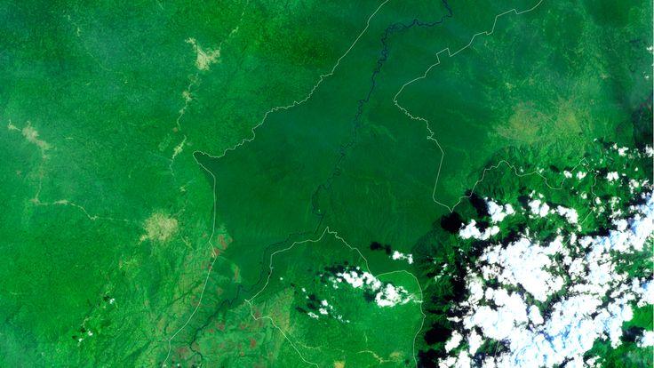 NASA Satellite Images Show Rainforest Destruction Getting Worse #climatechange