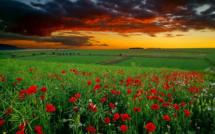 World Most Beautiful Nature | For PC Users: Click on the link to the right of the wallpaper that is ...