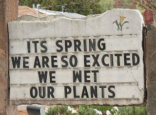 Its Spring We Are So Inspirational Life Quotes