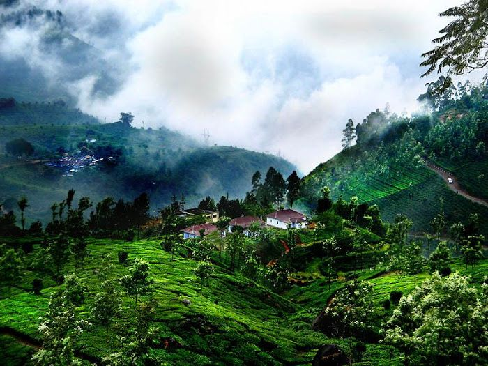 7 Nights & 8 Days Kerala Tour Packages. Destinations:	 Thekkady , Munnar , Kumarakom , Kovalam , Alappuzha Houseboat