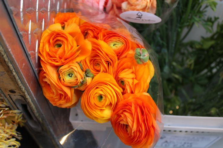 Our Flowers Blog | Chicago Florist and Event Design | Exquisite ...
