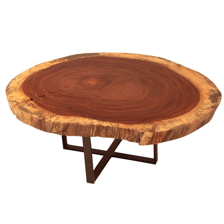 Large Tree Stump Coffee Table: Best 25+ Tree Coffee Table Ideas On Pinterest