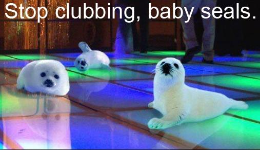 Stop clubbing, baby seals.: Babyseals, Funny Stuff, Funnies, Humor, Things, Punctuation, Baby Seals, Grammar