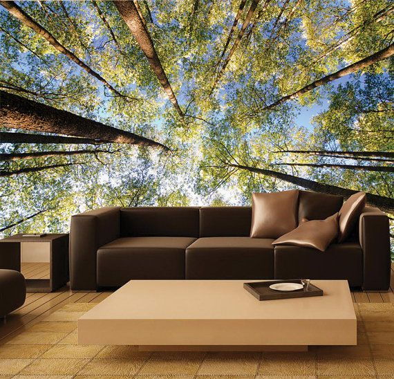 Wall MURAL, Photo Wall Decal, Self Adhesive Vinyl Wallpaper TREETOP