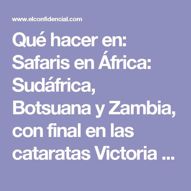 Qué hacer en: Safaris en África: Sudáfrica, Botsuana y Zambia, con final en las cataratas Victoria Viajes