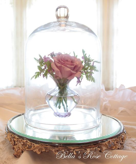 267 best images about so pretty on pinterest vintage for Rose under glass