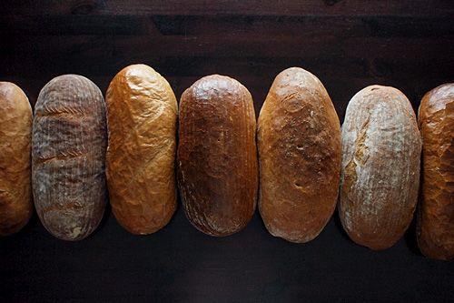 Scuk.cz Blog - Co musíte vědět o českém chlebu