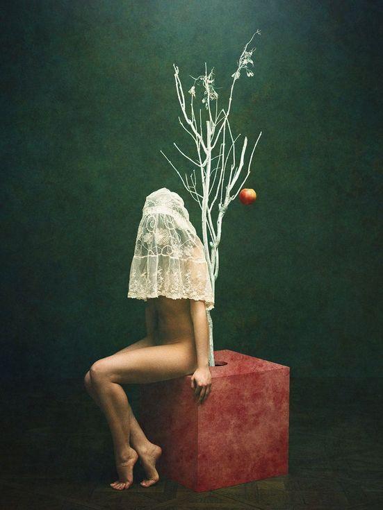 Buy Garden of Eden, Colour photograph (giclée) by Peter Zelei on Artfinder.