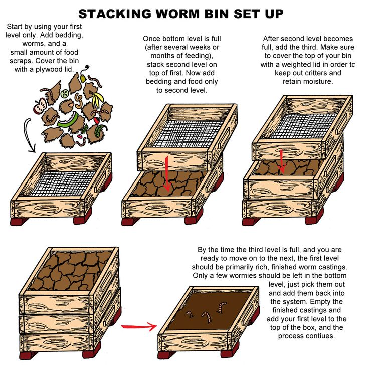 Worm farming will add value to your homestead. Either you can sell the worms for fish bait or you can use them for decomposition.