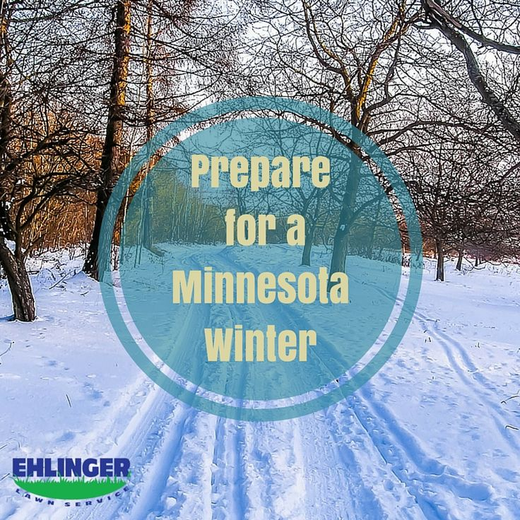 Learn how Ehlinger Lawn Service can help you prepare for