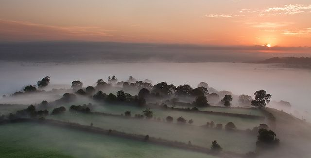 Somerset Septembers | The Levels