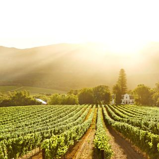 10 best wine spots in South Africa.