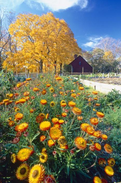 Jockey Hollow State Park, New Jersey