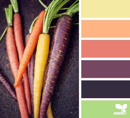 HOW TO CREATE A BRAND STYLE GUIDE IN 9 STEPS (color palettes by Design Seeds)